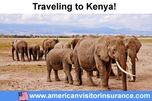 Buy visitor insurance for Kenya