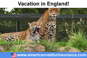 Buy visitor insurance for England