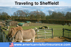 Buy visitor insurance for Sheffield