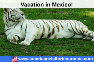 Mexico travel insurance