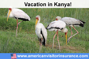 Kenya travel insurance