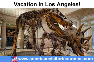 Los Angeles travel insurance