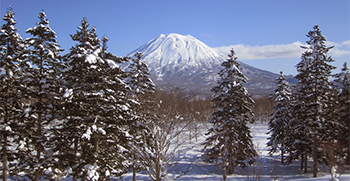 Travel insurance for Niseko