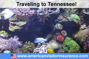 buy visitor insurance for Tennessee